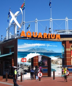 Aquarium entrance shot